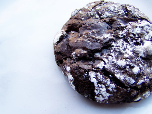chocolate-cookie-closeup-small