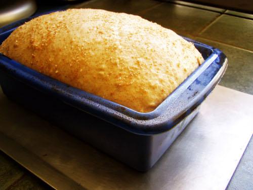 wheat-bread-risen-small