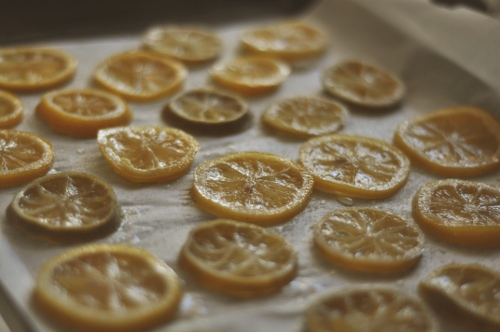 candied-citrus-ss